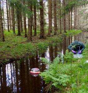 A person by a forest stream with measuring equipment in it. Photo.