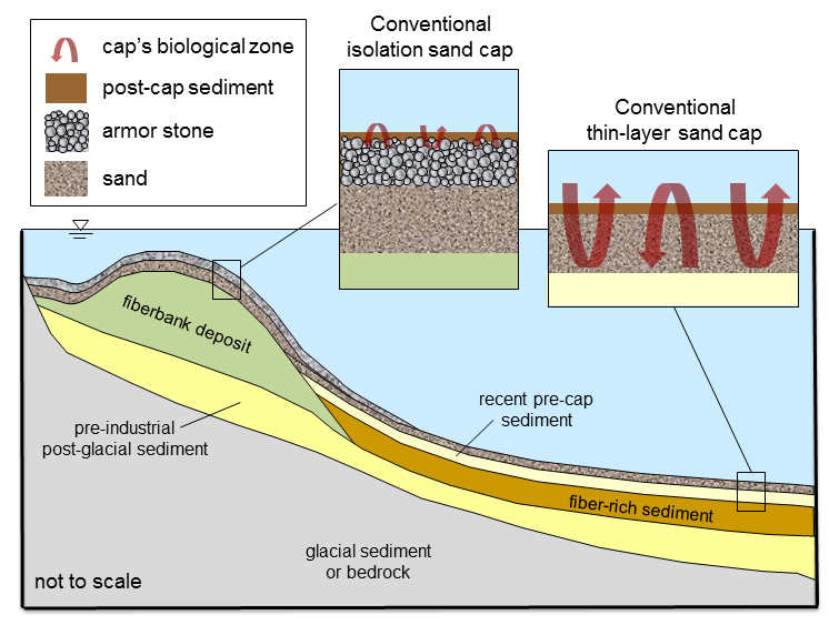 An illustration of hypothetical solutions to isolating the contaminated sediments. Illustration.